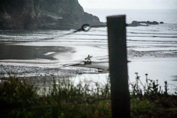 Oregon Surf